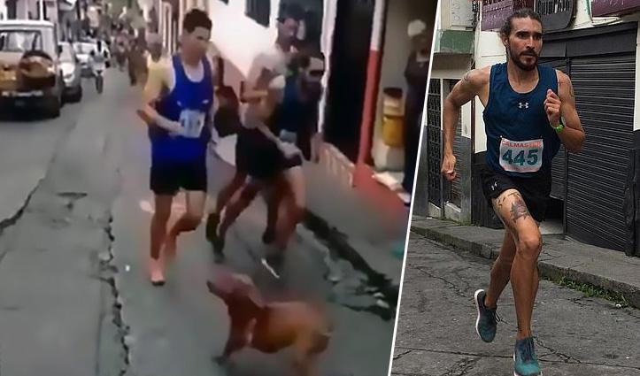 दौड़ते हुए रास्ते में आए कुत्ते को Runner ने मारी Kick, इस हरकत की चुकानी पड़ी बड़ी कीमत
