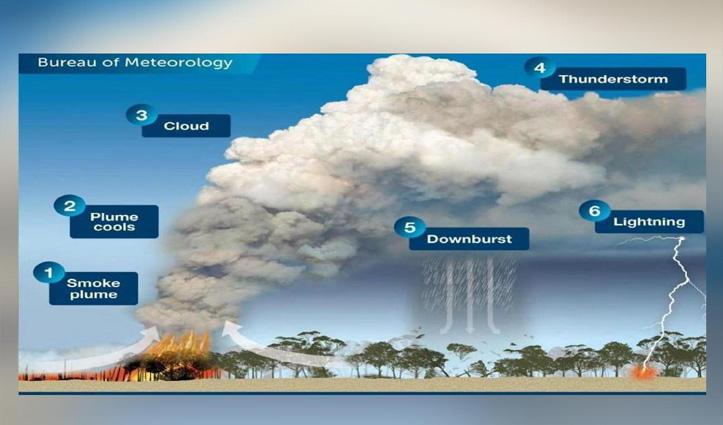 अपना ही मौसम बना रही है ऑस्ट्रेलियाई जंगलों में लगी भीषण आग, जानें कैसे