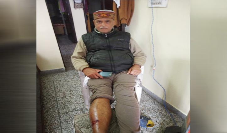 Mandi में कुत्ते के काटने से 18 लोग पहुंचे अस्पताल, Una में नोची महिला