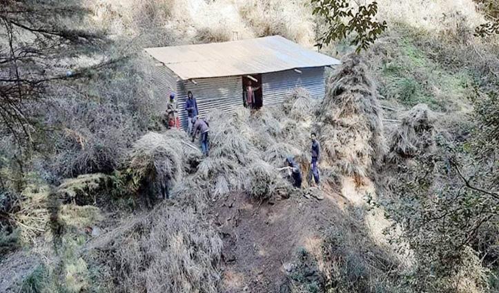 इन हिमाचली युवाओं ने अपने दम पर यहां कर डाला गौसदन का निर्माण