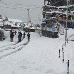 किन्नौर में बर्फबारी ने फिर बिगाड़े हालात, नारकंडा में सड़कों पर लगा लंबा जाम