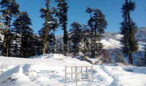 शीतलहर की चपेट में Himachal, पांच जिलों में हिमस्खलन का खतरा