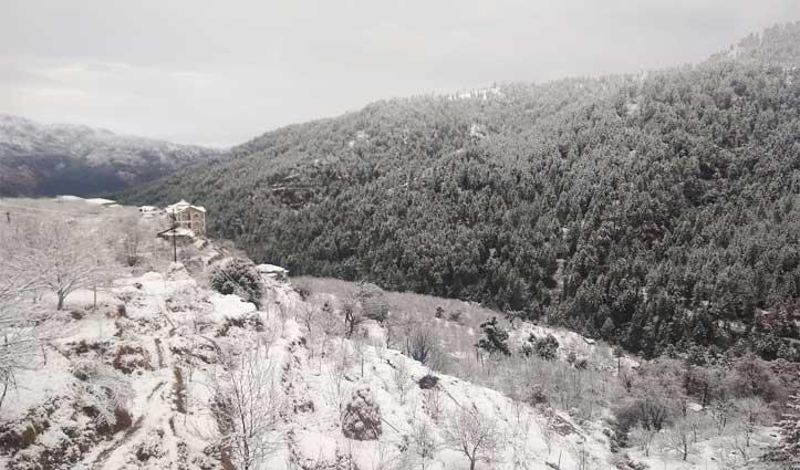 Fresh Snowfall ने फिर बढ़ाई मुश्किलें, ऊपरी शिमला के लिए आवाजाही ठप