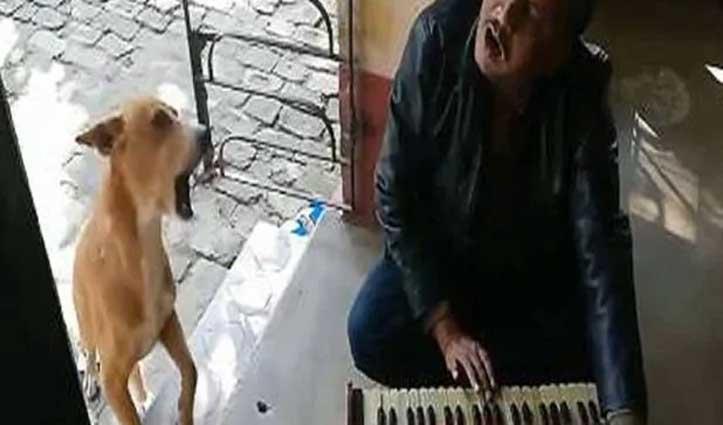 जब कुत्ते ने हारमोनियम पर गाया 'रानू मंडल का तेरी मेरी'.. वीडियो हुआ वायरल