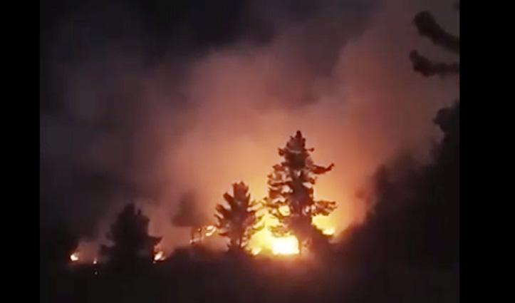 Shimla : सेब के बगीचों में भयंकर आग, 480 पौधे जलकर राख