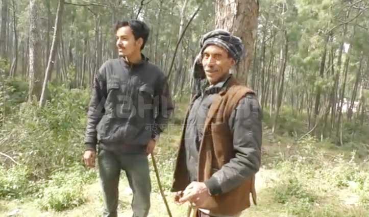 लाठी के सहारे मुश्किल हो रही भेड़-बकरियों और परिवार की सुरक्षा, Gaddi Community ने मांगे हथियार