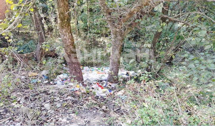 स्वच्छ भारत मिशन को ठेंगा : कुणाल पत्थरी सड़क किनारे जंगल में फेंका जा रहा कूड़ा