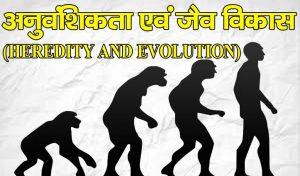 विज्ञान विषयः अध्याय-9……… अनुवंशिकता एवं जैव विकास