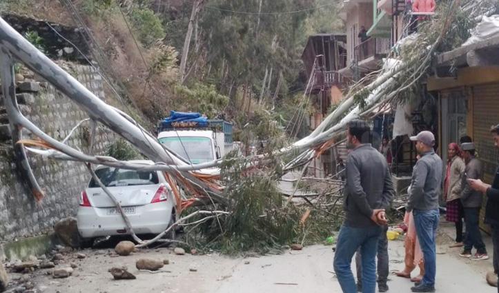 NH-305 पर गिरा सफेदे का पेड़, तीन मकान और Car को पहुंचा नुकसान