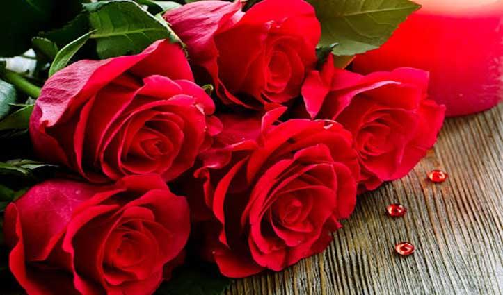 Stress दूर करने के लिए इस्तेमाल करें गुलाब, नींद और दिमाग के लिए भी वरदान