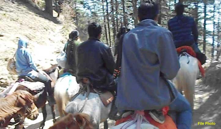 शिमलाः घोड़ा संचालकों से 10 फीसदी वसूली का फैसला वापस, बढ़ेगी लाइसेंस फीस