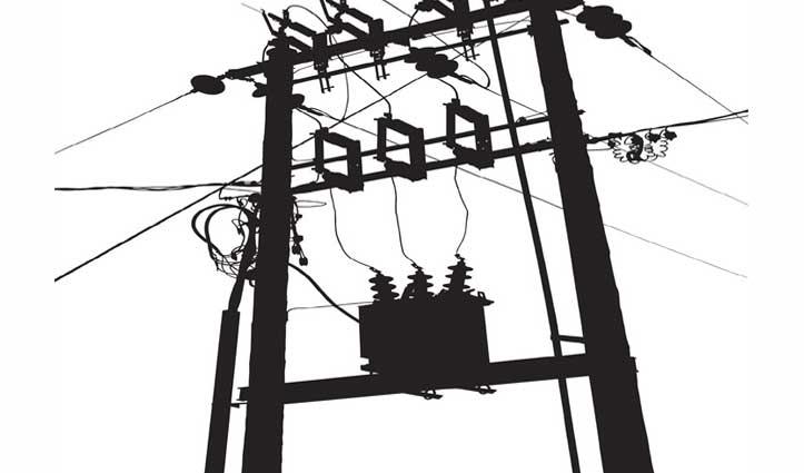 ट्रांसफॉर्मर के अंदर घुसा बंदर बिजली की तारों में उलझा, घंटों बाधित रही बिजली