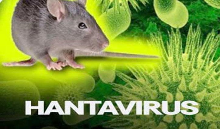 हंता Virus से ना घबराएं, यहां जानें लक्षण और कैसे इसे फैलने से रोका जा सकता है?