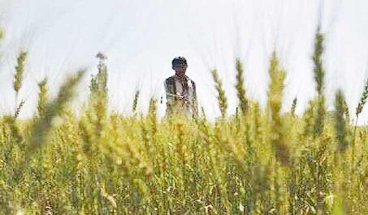 Lockdown के दौरान किसानों को काम करने की छूट, कृषि संबंधित कंपनियों को भी राहत