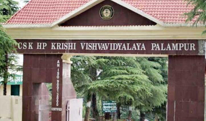 कोरोना वायरसः हिमाचल Agriculture University पालमपुर की परीक्षाएं स्थगित