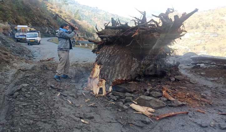 लगघाटी मार्ग पर गिरा पेड़ का ठूंठ, दर्जनों सरकारी और निजी बसें फंसी