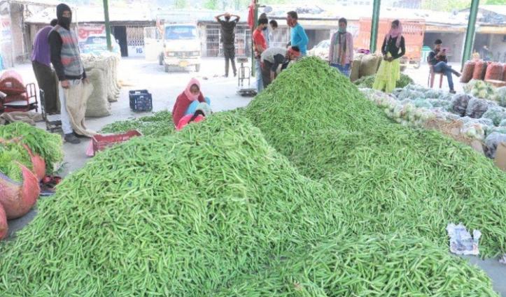 Shimla और Sirmaur से मंडियों में पहुंच रहे मटर, दाम गिरने से किसान दुखी