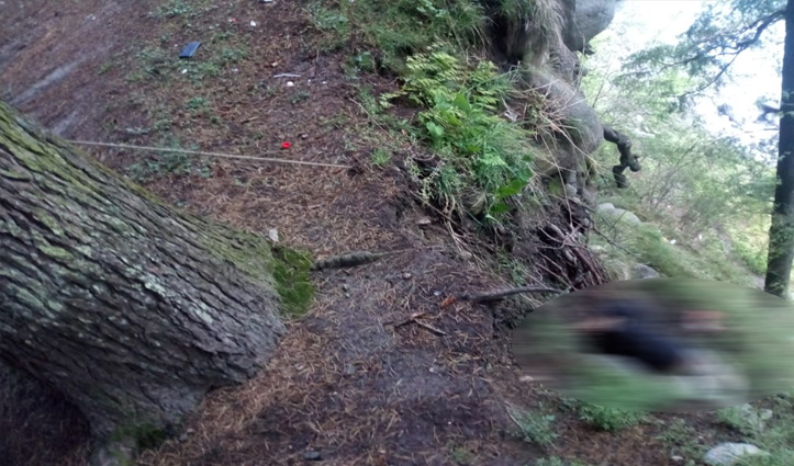 Manali में पेड़ से लटका मिला सिक्किम के युवक का शव, Aadhar Card से हुई पहचान