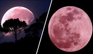 Super Pink Moon: आज निकलेगा सबसे बड़ा चांद, जानिए देश में कब और कहां दिखेगा नजारा