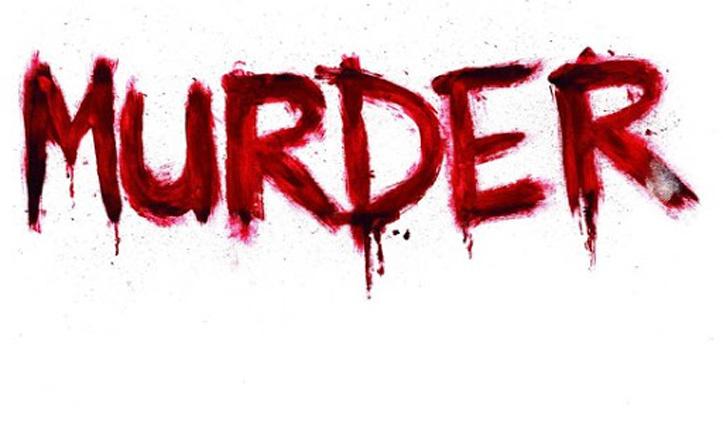 Murder : हिमाचल के इस शहर में पति ने पत्नी के सिर पर दे मारी ईंट, हुआ Arrest