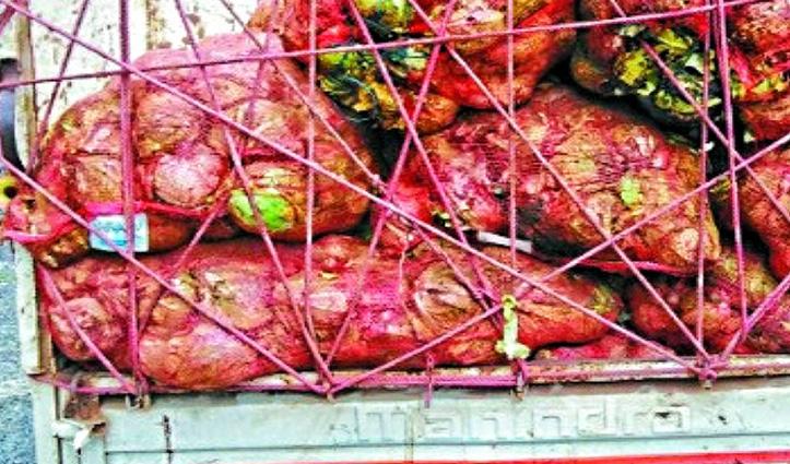 किसान-बागवानों को राहत : बिना Curfew pass दूसरे राज्यों में जा सकेंगे फल-सब्जियों के वाहन
