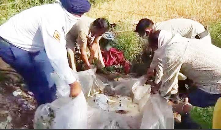 Kangra जिला में कच्ची शराब बनाने वालों पर चला चाबुक, पांवटा में अफीम बरामद
