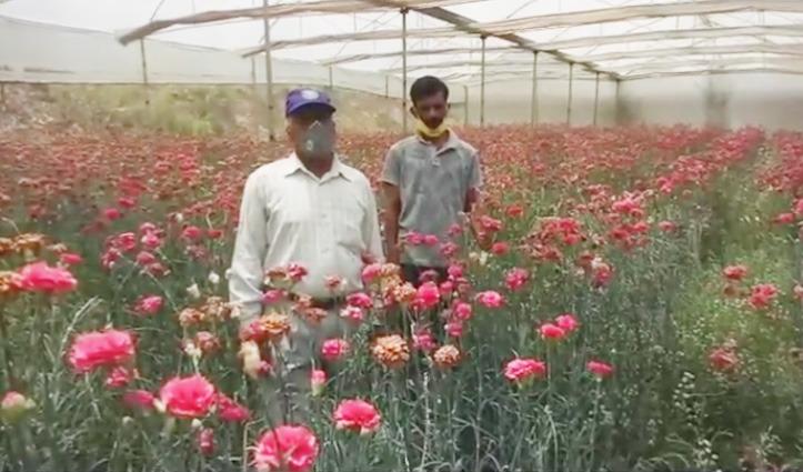 Corona ने तोड़ी बागबान की कमर, बैंक से Loan लेकर शुरू की थी फूलों की खेती, लाखों की फसल बर्बाद