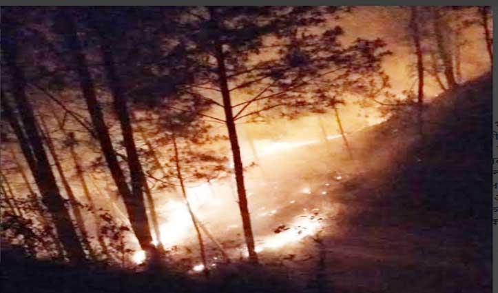 गोहर: सरोआ बीट के जंगल में लगी भीषण आग, लाखों की वन संपदा जलकर हुई राख