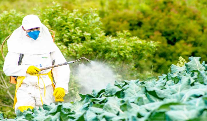 अब घर बैठे कीटनाशकों की खरीद और ऑनलाइन आवेदन कर सकेंगे किसान-बागवान