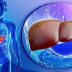 Fatty Liver Disease से बच कर रहें मोटे लोग, जानिए इसके पीछे की वजह और बचाव