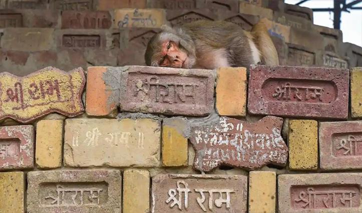 राम मंदिर निर्माण पर Pak ने BJP-RSS को घेरा; भारत ने बताया 'बेतुका बयान'