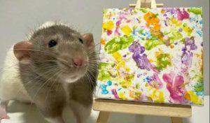 कलाकारी करता है ये कमाल का चूहा, हजारों में बिकती हैं इसकी Painting