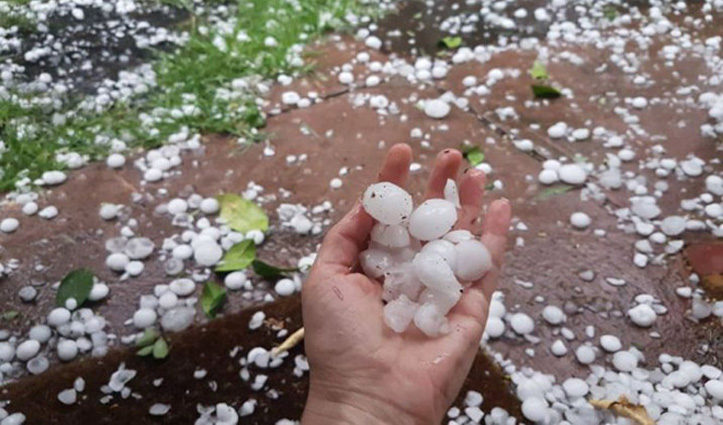 Himachal: बारिश व ओलावृष्टि से किसानों को 41 करोड़ का नुकसान, मौसम की मार अभी भी जारी