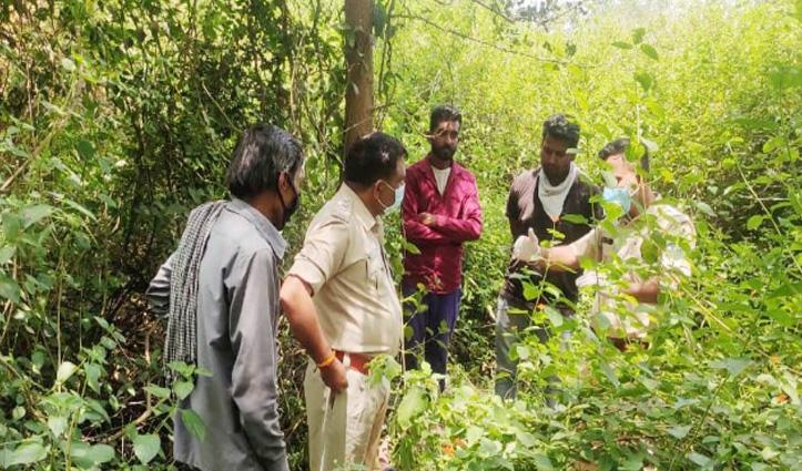 पांवटा साहिब: Murder case में संदिग्ध युवक ने जंगल में पेड़ से फंदा लगाकर की आत्महत्या