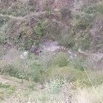 शिमला से Karsog लौट रहे लोगों की Car खाई में गिरी, पति-पत्नी सहित तीन की मौत