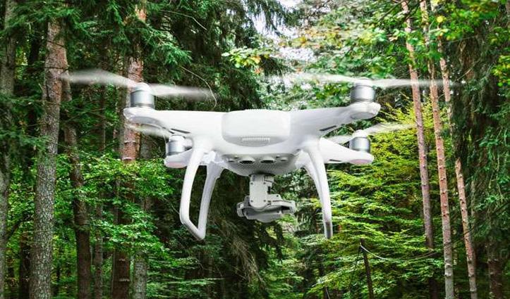 First Hand: हिमाचल में अवैध कटान रोकने के लिए Drones की ली जाएगी मदद