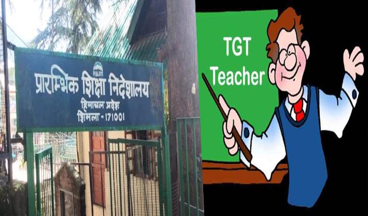 TGT के 554 पदों पर बैचवाइज भर्ती प्रक्रिया शुरू; भरे जाएंगे कला, नॉन मेडिकल और मेडिकल संकाय के पद