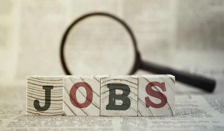 Job चाहते हैं तो कर लो ये काम, Certificate लेकर आना होगा Employment Office