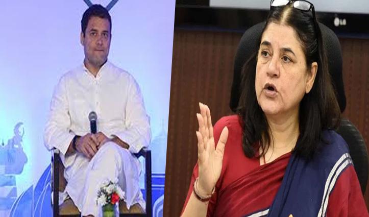 हथिनी की मौत पर भड़कीं मेनका: Rahul Gandhi की चुप्पी पर बोलीं-उसको कुछ समझ तो आता नहीं!