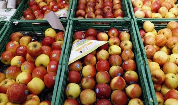 सेब का समर्थन मूल्य बढ़ाने को जयराम Cabinet ने दी मंजूरी, नया मूल्य जानने के लिए करें Click