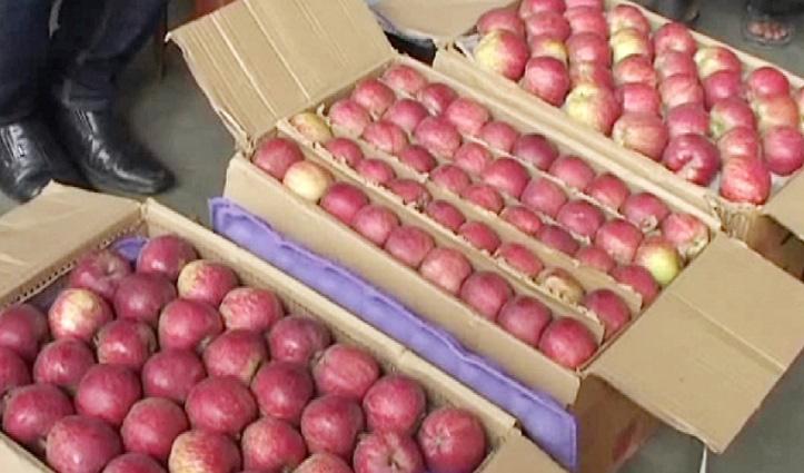 कोरोना टेस्ट के बाद ही Himachal की मंडियों में सेब की खरीद-फरोख्त कर सकेंगे बाहरी कोरोबारी