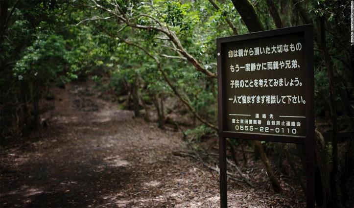Suicide forest नाम से मशहूर है ये जंगल, यहां जाने के बाद कोई जिंदा नहीं लौटता