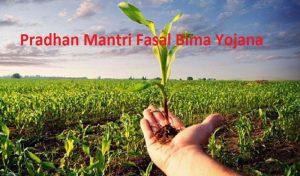 Pradhan Mantri Fasal Bima Yojana में क्या कुछ है इस बार, जानने के लिए करें क्लिक