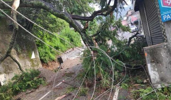 धर्मशाला में Gas Agency के भवन पर गिरा पेड़, बिजली की तारें भी टूटीं