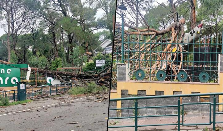 बारिश-तूफान के बीच Kangra District में हो गया क्या हाल, देखें तस्वीरें