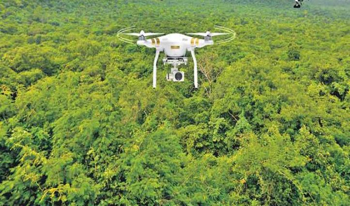 Haryana के वनों में बढ़ाएंगे पौधों की संख्या, पिंजौर से यमुनानगर तक Drone से डाले जाएंगे बीज