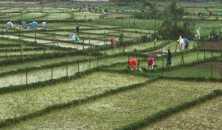 झमाझम बारिशः गर्मी से राहत, किसान खुश ….यहां देखें तस्वीरें