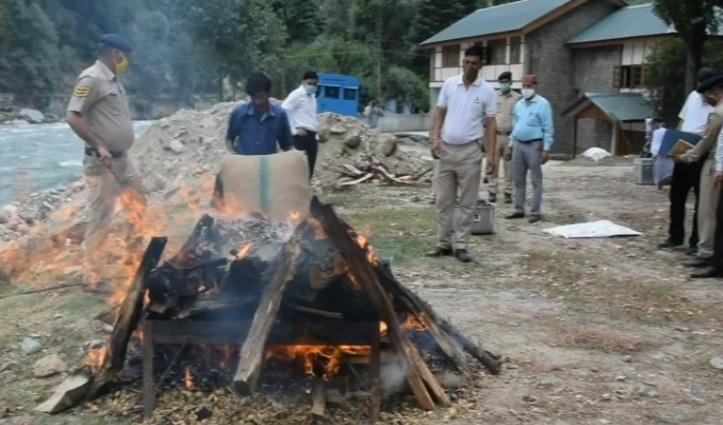 Kullu: पुलिस ने 17 मामलों में पकड़ी 73 किलो चरस, 61 किलो अफीम डोडा, किया आग के हवाले
