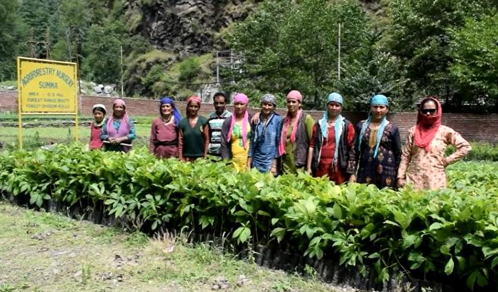 Kullu में बोलीं महिला मजदूर- 250 रुपए में नहीं होता गुजारा साढ़े तीन सौ करो दिहाड़ी