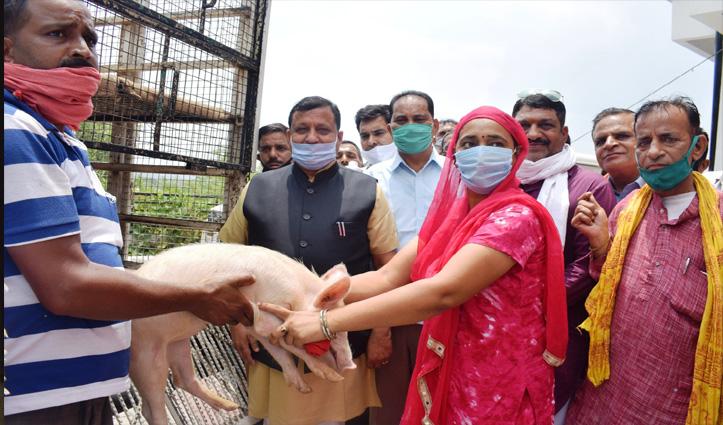 हिमाचल के किसानों के लिए आई अनोखी योजना, Five Lakh तक की सालाना कर सकते हैं कमाई